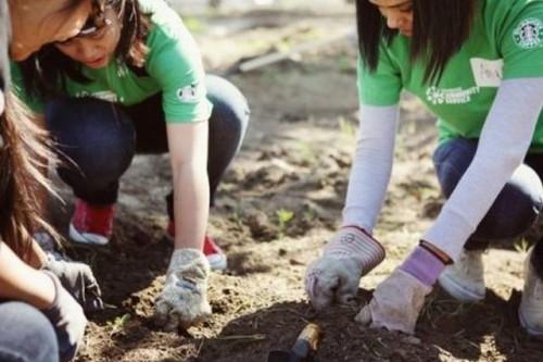 Starbucks® ogłasza kwiecień miesiącem pracy wolontaryjnej