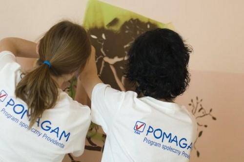 Wolontariusze Providenta ruszyli do akcji