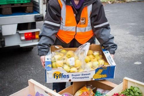 W Polsce co roku na śmietnik trafia żywność warta 14 mld euro