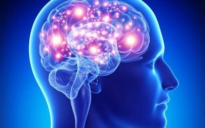 CogniCoalition Fundacja Na Rzecz Zdrowego Mózgu