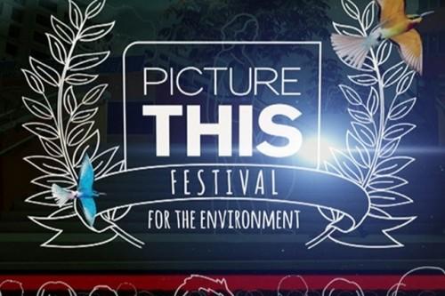 Znamy zwycięzcę Festiwalu Picture This! na rzecz ochrony środowiska