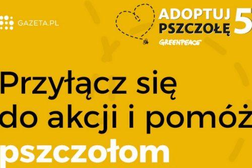 """Gazeta.pl po raz trzeci partnerem akcji """"Adoptuj pszczołę"""""""