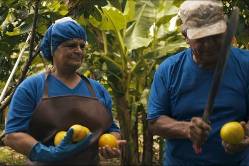 """Festiwal Filmowy """"Open Eyes to Fair Trade"""""""
