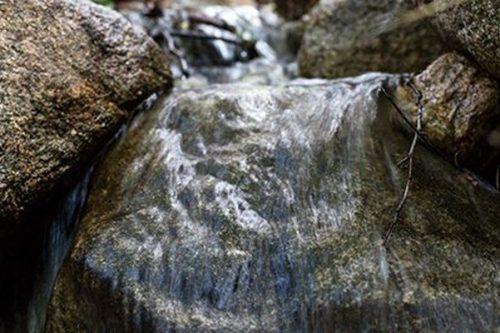 Nestlé Waters zacieśnia współpracę z Alliance for Water Stewardship