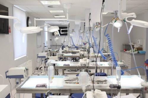 Polska branża medyczna coraz bardziej innowacyjna