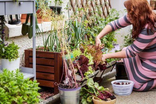 Zrównoważony dom  – praktyczne wskazówki od IKEA dla każdego