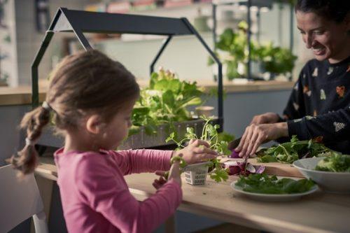 IKEA wycofuje plastikowe produkty jednorazowego użytku ze swoich sklepów i restauracji