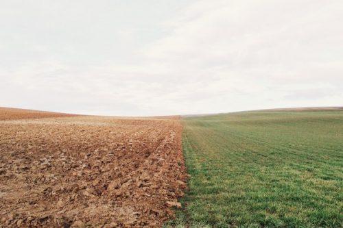 Rolny świat warty Poznania