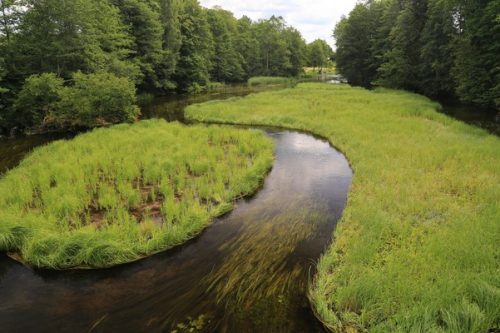 Małe rzeki potrzebują pomocy