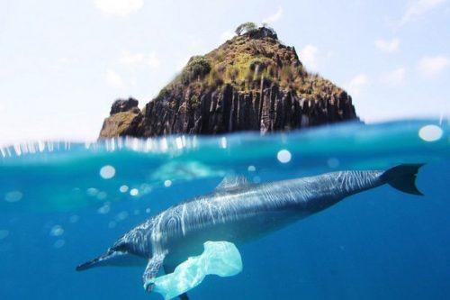 ABB Ability™ pomaga zwalczać rosnący problem plastiku w oceanach