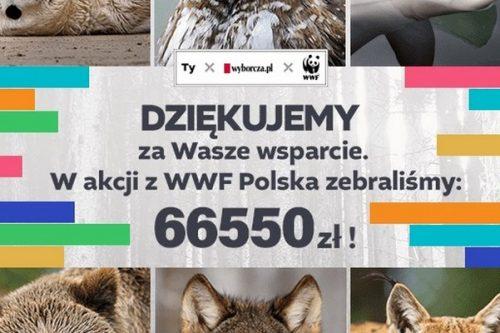 66 550 zł dla WWF w akcji PrenumeRATUJ